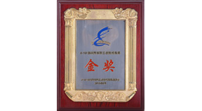 宜美康—2013海峡两岸职工创新成果展金奖证书