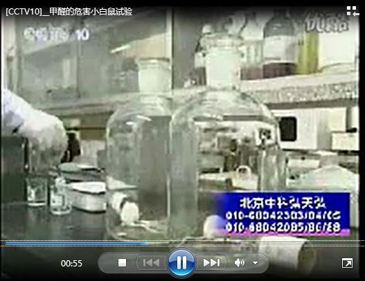 小白鼠实验甲醛危害